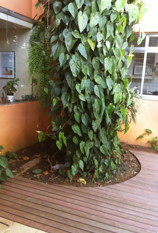 Deck de Madeira no Jardim em Sapopemba - Deck de Madeira no Jardim